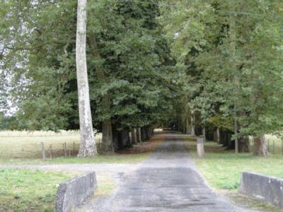 Country lane in Chevenon
