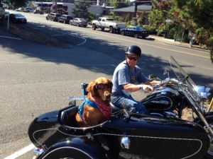 Out for a ride in Gig Harbor
