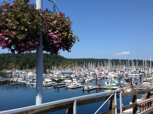 Friday Harbor marina on a flawless day